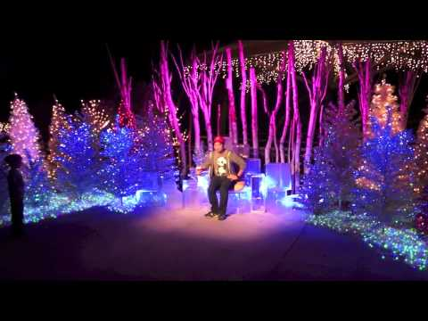 LA Zoo Lights - The electrical opening night & LA Zoo Lights - The electrical opening night - YouTube azcodes.com