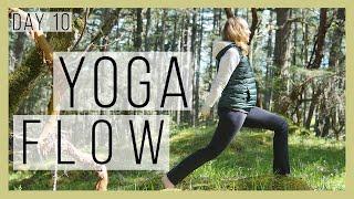 10 min Beginner Yoga Flow 30 Day Beginner Yoga Challenge Day 10