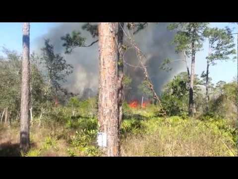 Arson Fire - Moon Lake - 2-5-2013
