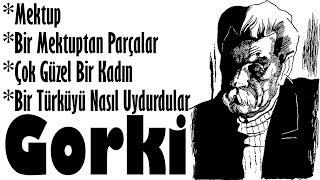 """""""KISA ÖYKÜLER"""" Maksim GORKİ sesli kitap tek parça Akın ALTAN"""