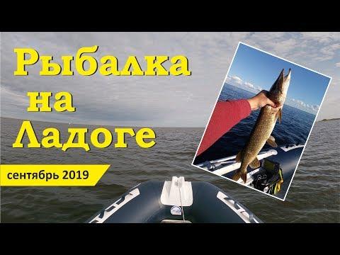 Рыбалка в Новой Ладоге. Креницы. Осенняя рыбалка в Ладожском озере.