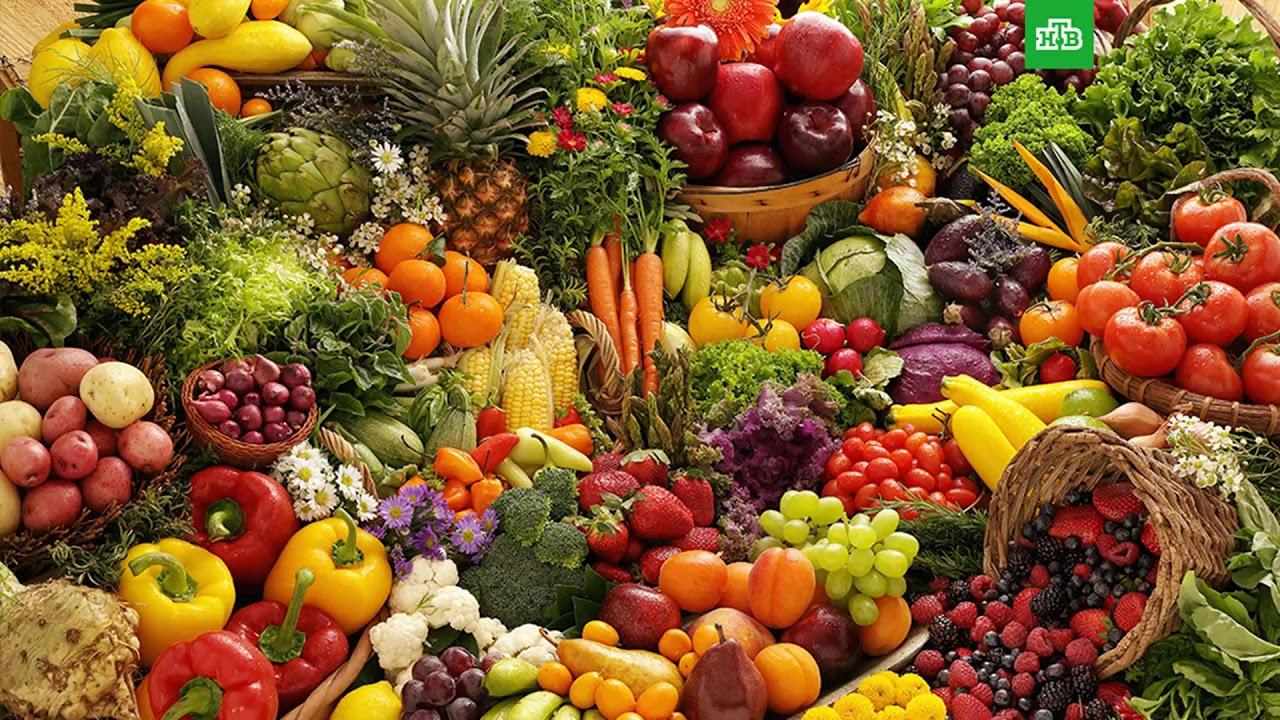 Здоровая жизнь. Правильное питание. Прознум - YouTube