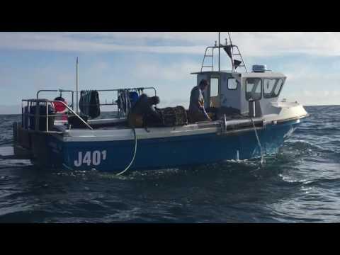 Jersey Lobster Fishing 2k16