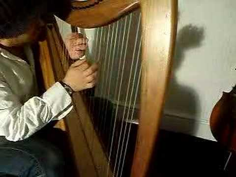 Mark Levin Harpist Prodigy Cover 'No Good'