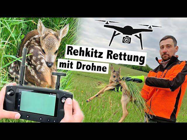 Rehkitzrettung mit Drohne und Wärmebildkamera   Pro Kitz e.V.