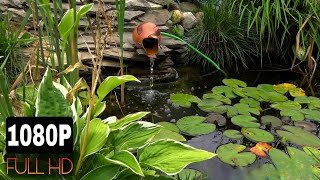 Волшебная медитация, звук, шум, журчание, гул воды, пение птиц, релакс, медитация, природа.