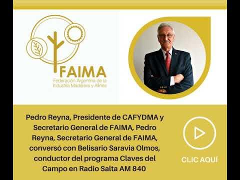 Pedro Reyna habló del 137° Congreso Maderero en Radio Salta AM 840
