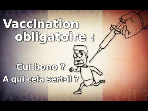 info / Vaccination obligatoire : Cui bono ? A qui cela sert il ? - YouTube