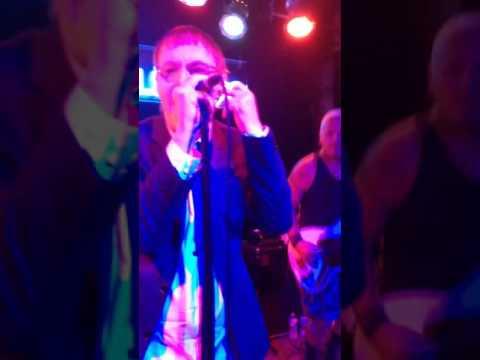 Dickies performing