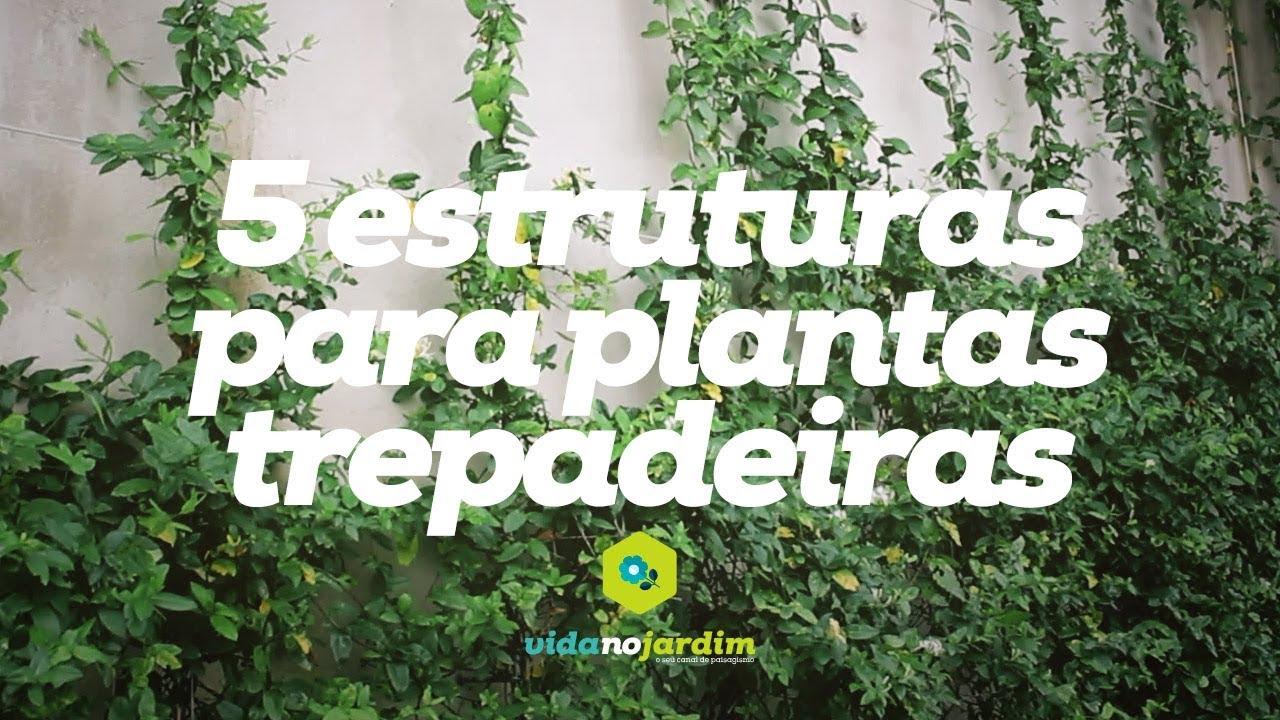 5 estruturas para plantas trepadeiras  YouTube