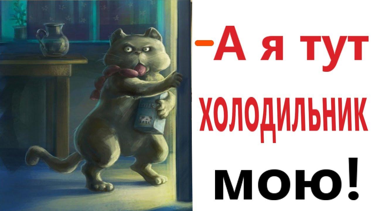 Приколы! ХОЛОДИЛЬНИК ДЛЯ КОТА! Угарная ржака до слёз 2021 от Доми шоу (Анимация)