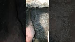 Czyszczenie mechaniczne zasmołowanego komina