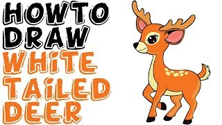 How To Draw White Tailed Deer Full Body