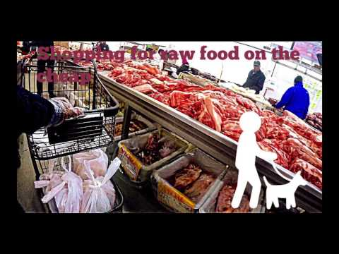 How To Shop Cheaply for Raw Dog Food And Cure All Food Allergies!!