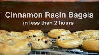 Cinnamon Rasin Bagels (in less than 2 hours)