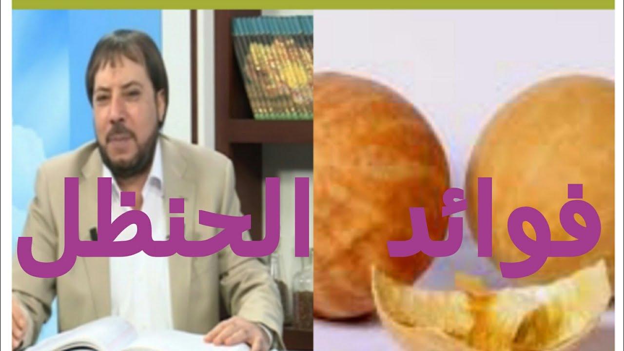 فوائد الحنظل مع الدكتور ابو علي الشيباني Youtube
