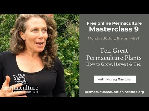 10 Great Permaculture Plants: Morag Gamble's Monthly Permaculture Masterclass