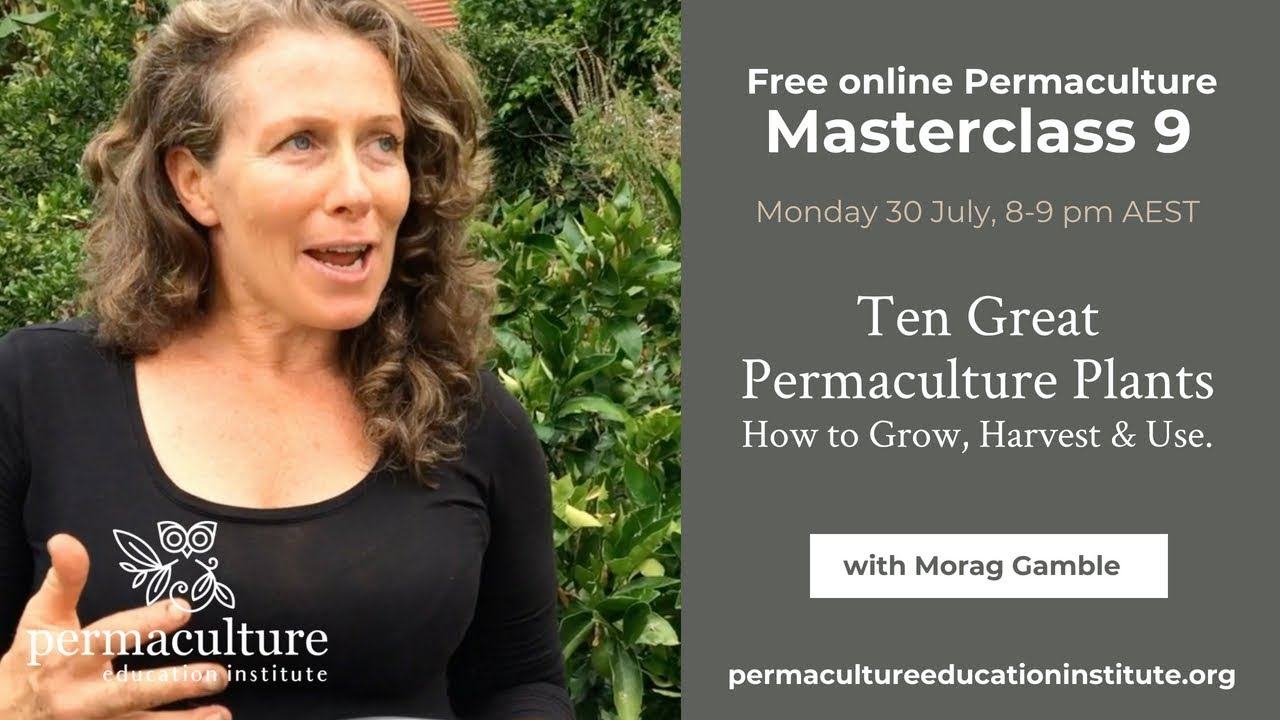 Permaculture online dating