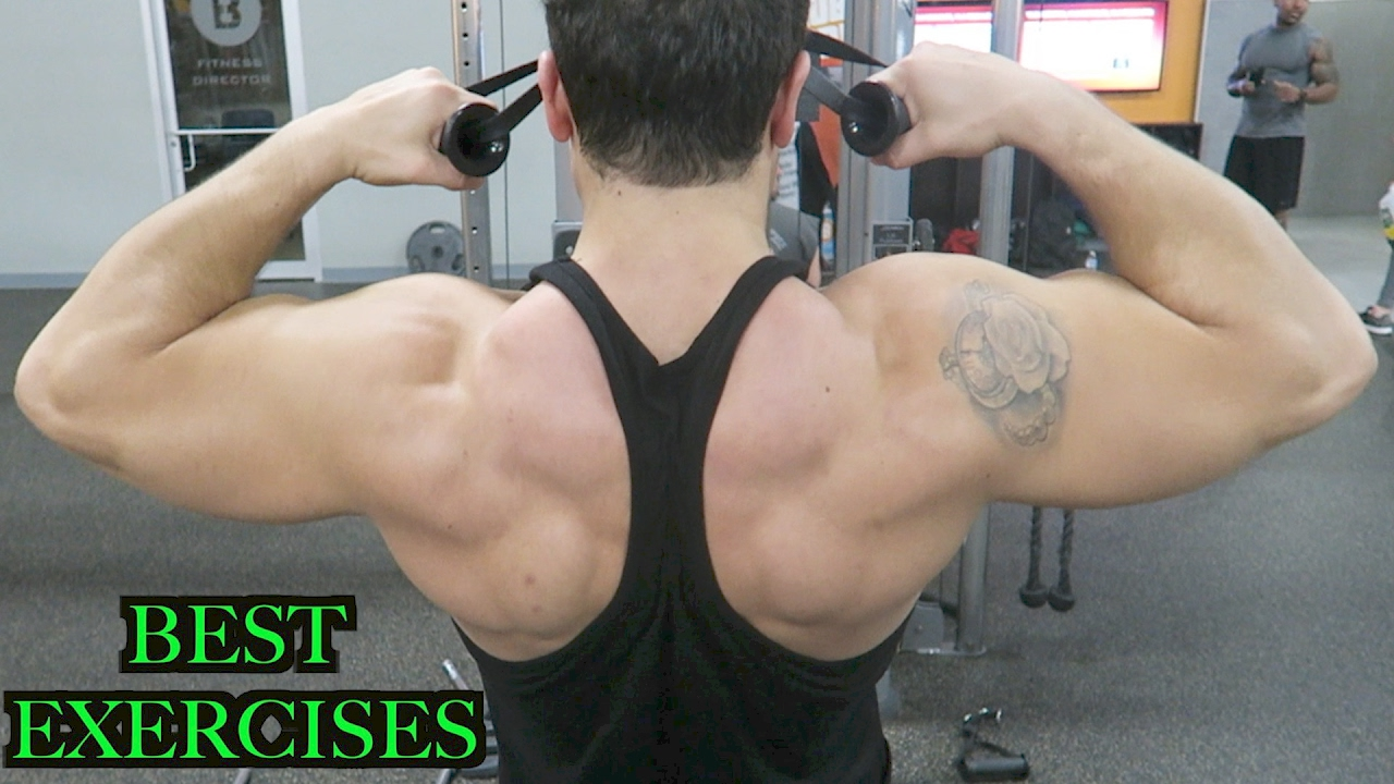 Top 3 Exercises To Build Rear Delts Rhomboids Middle Traps Youtube