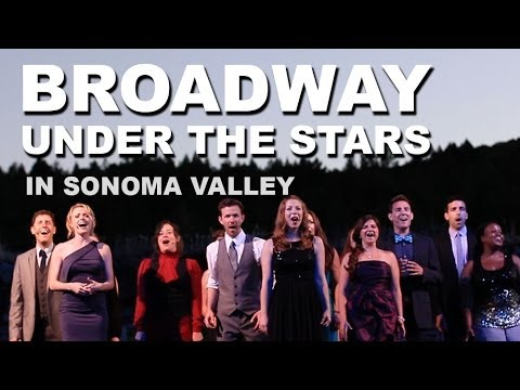 Transcendence Theatre's Broadway Under The Stars - Best things to do in sonoma valley wine country