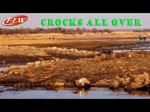 Crocks Get Close At Rust De Winter FLW 2019