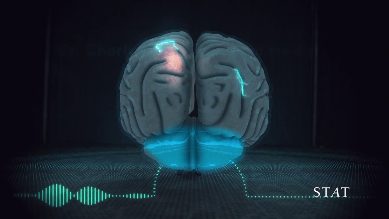 This Is How Music Gets Into Your Brain Youtube