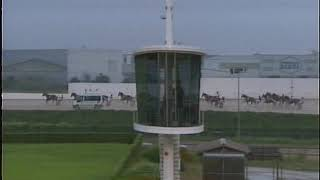 Vidéo de la course PMU PREMI PENSEE D'OLIVIER