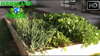 2015 Urban Homestead Gardening Updates By Hpfirearms
