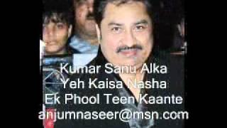 Kumar Sanu & Alka ((Yeh Kaisa Nasha Nasha))