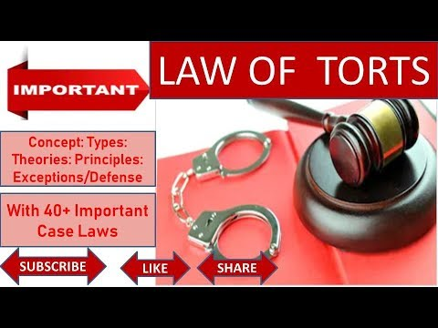 Law Of Torts: Introduction, Elements, Theories & Exceptions