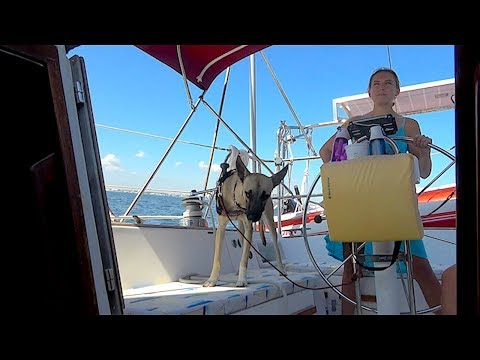 Sailing With Your DOG For The First Time... Ep.92