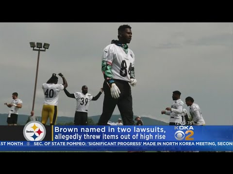 Dan Rivers - Steelers Wide Receiver In Trouble For Throwing Furniture