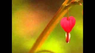 Tu Mujhe Soch Kabhi Yahi Chahat Hai Meri Karan Bollywood Romantic Full Song   2