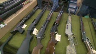Secret Gun Provision Hidden Inside Obamacare