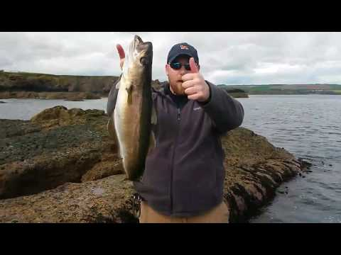 Eyemouth lure session.
