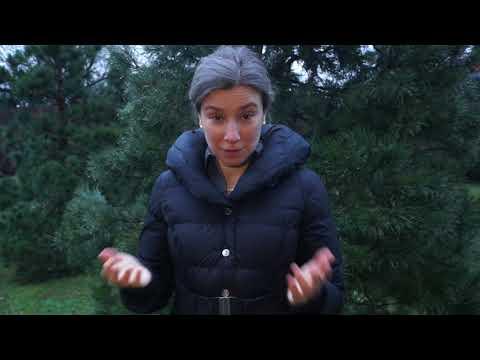 Новогоднее обращение Екатерины Шульман