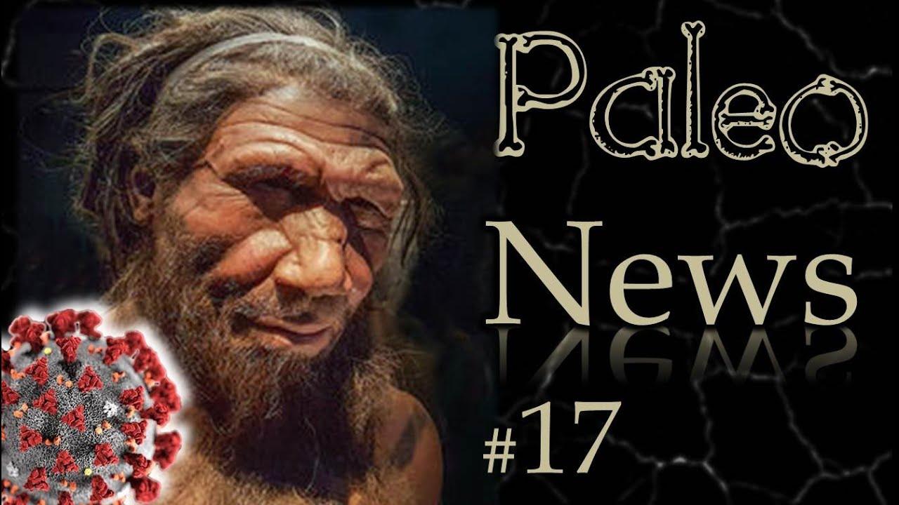 COVID-19 ? Merci Néandertal !