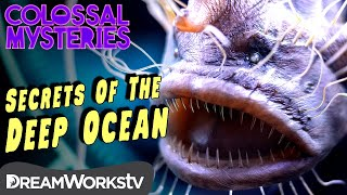 Whats Hidden Beneath the Ocean? | COLOSSAL MYSTERIES