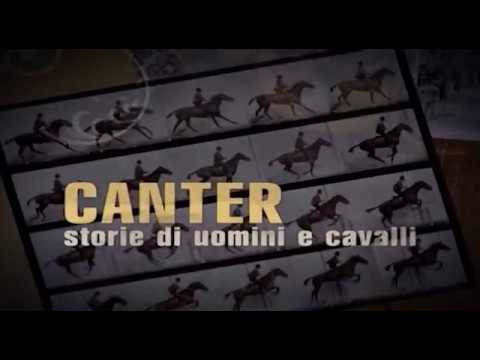 CANTER (20/08/2017)