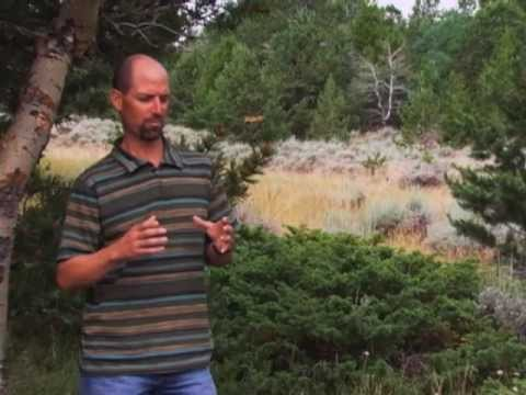 Wyoming Wildlife TV #5--Energy Development Part 1