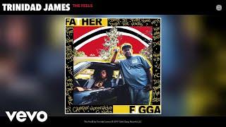 Trinidad James - The Feel$ (Audio)