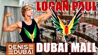 Влог: Logan Paul в Дубае | Dubai Mall