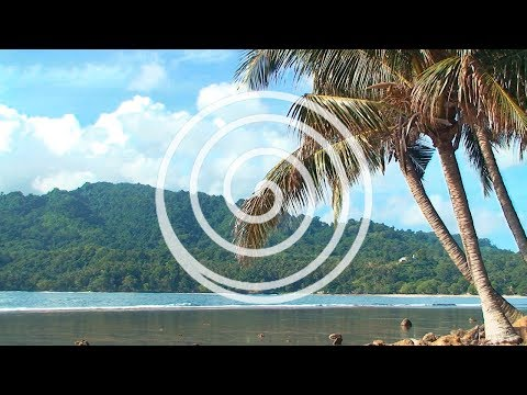 Sounds of Bali - Wonderful World - Music of Bali (PURERELAX.TV)