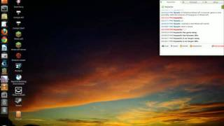 Ubuntu 11.04 Unity Compiz Bug