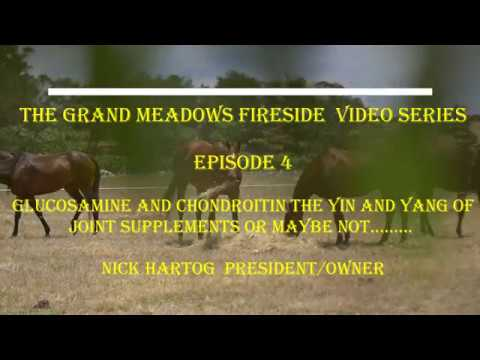 Fireside Chat - Episode 4 - Glucosamine & Chondroitin - The Yin & Yang Of Horse Supplements?