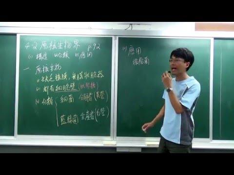 國一下生物4-2(1)原核生物界