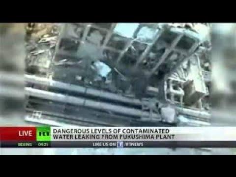 New radioactive leak found at Fukushima plant
