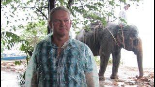 399 Вьетнам ДАКЛАК ЕДЕМ НА СЛОНАХ ПО ДЕРЕВНЕ СЛОНОВ на ОЗЕРО ЛАК Vietnam ELEPHAN VILLAGE DAKLAK LAKE