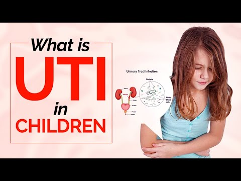An introduction to Urinary System Infections in Toddlers