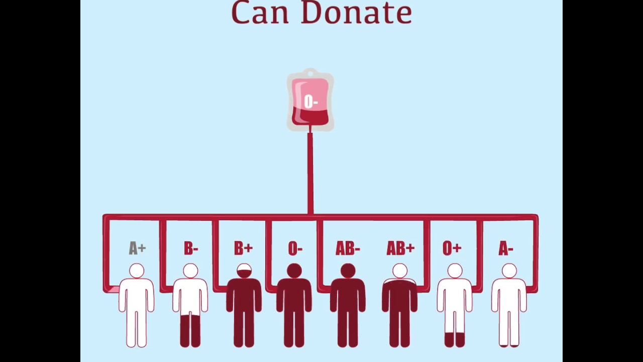 Blood Types & Whom You Donate!!! - YouTube